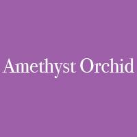 Amethyst_Orchid